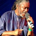 horace andy and ashley beedle - angie