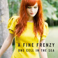 a fine frenzy - fever