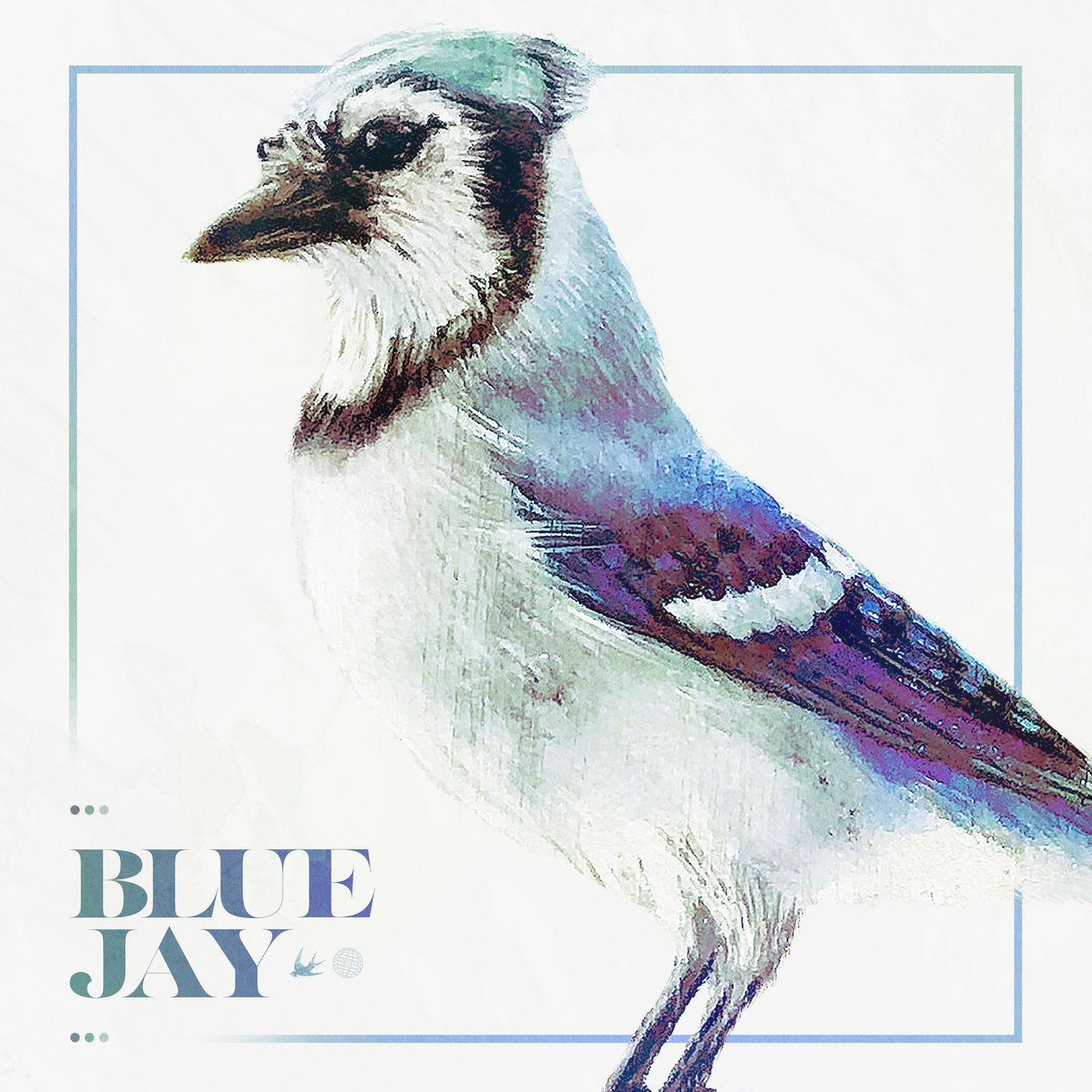 Nomvdic - Blue Jay [single] (2020)