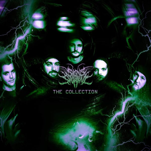 Signs of the Swarm - The Collection [single] (2021)