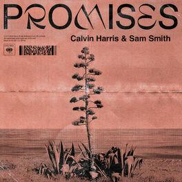 Album cover of Promises