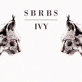 Album cover of Ivy