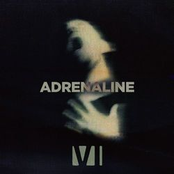 You Me At Six – Adrenaline 2021 CD Completo