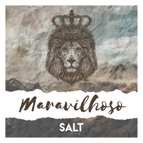 Baixar Música Maravilhoso (Ao Vivo) – Cia SALT (2019) Grátis