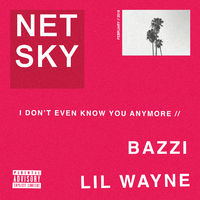 I Don't Even Know You Anymore - NETSKY-BAZZI
