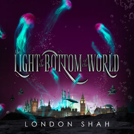 Album cover of The Light at the Bottom of the World (Unabridged)
