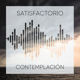 Album cover of # 1 Album: Satisfactorio Contemplación