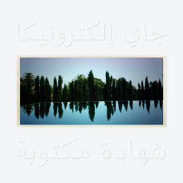 Album cover of A Written Testimony