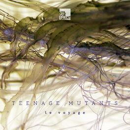 Album cover of Le voyage