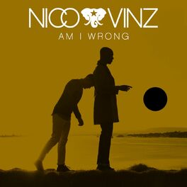 Album cover of Am I Wrong