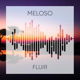 Album cover of 2019 Meloso Fluir