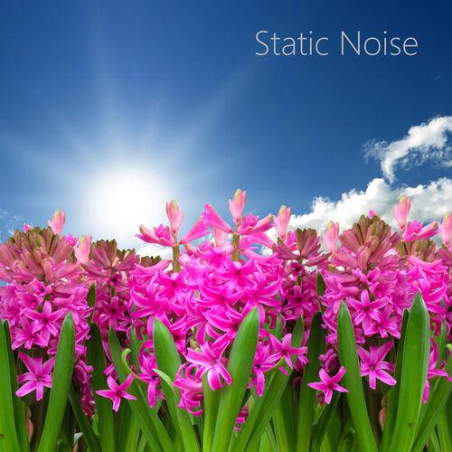 TV Static White Noise: TV Sound Noise Effect - Music