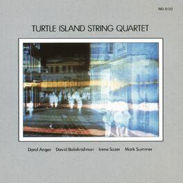 Turtle Island String Quartet - Turtle Island String Quartet