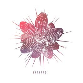 Album cover of SVTVNIC