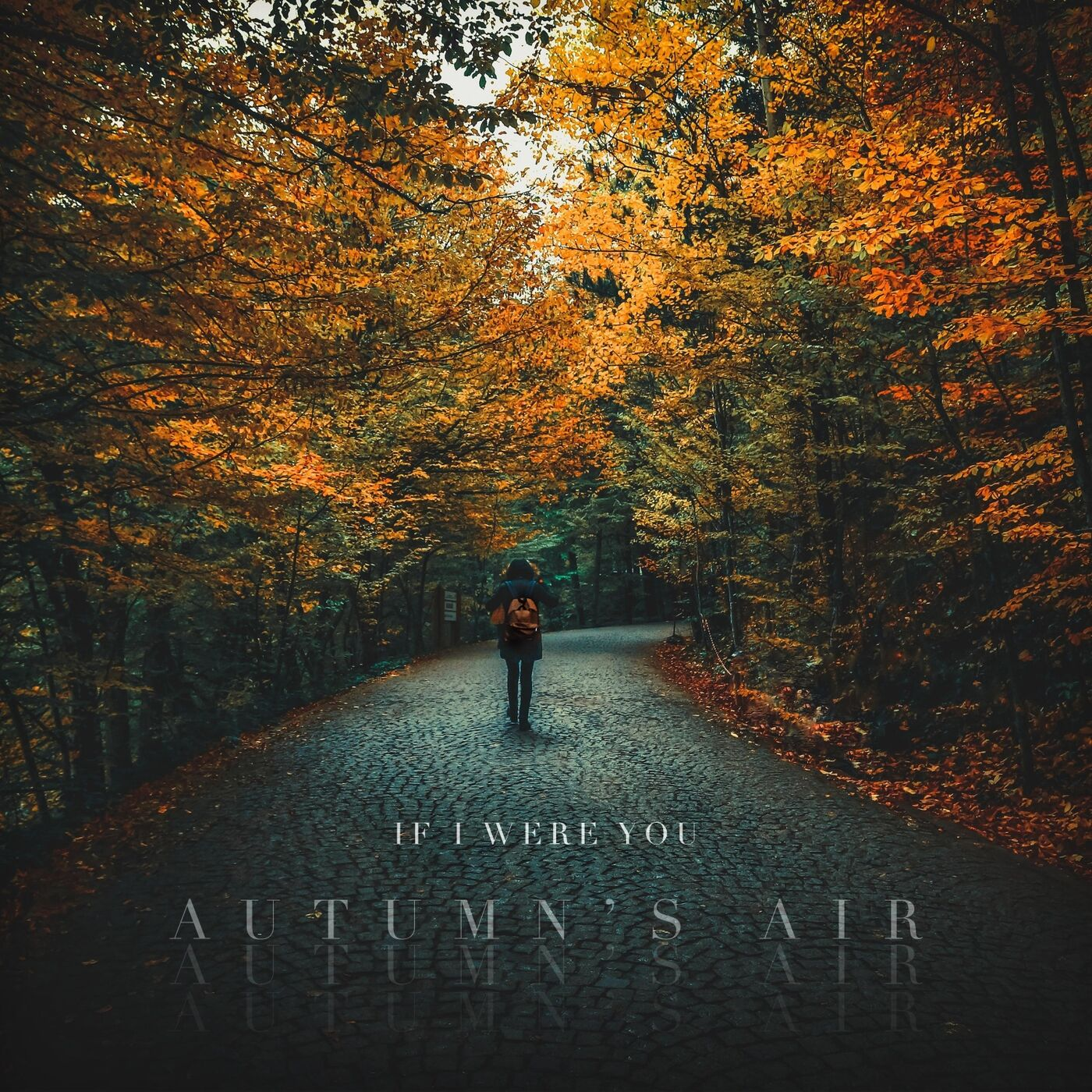 If I Were You - Autumn's Air [single] (2019)