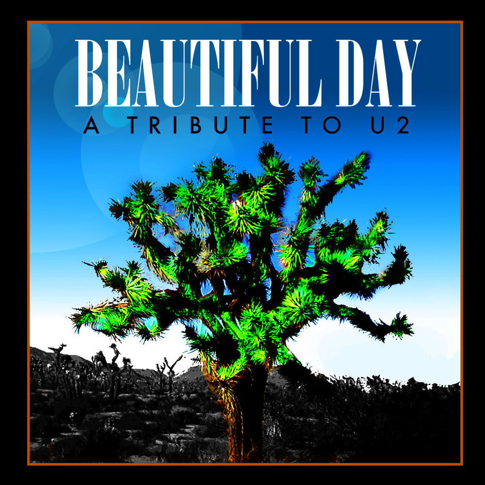 Beautiful Day (Made Famous by U2)