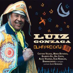 Vários Artistas – Luiz Gonzaga – Olha Pro Céu – 100 Anos 2014 CD Completo