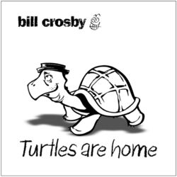 Turtles Are Home