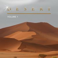 I See The Light (Eddie Amador rmx) - DESERT