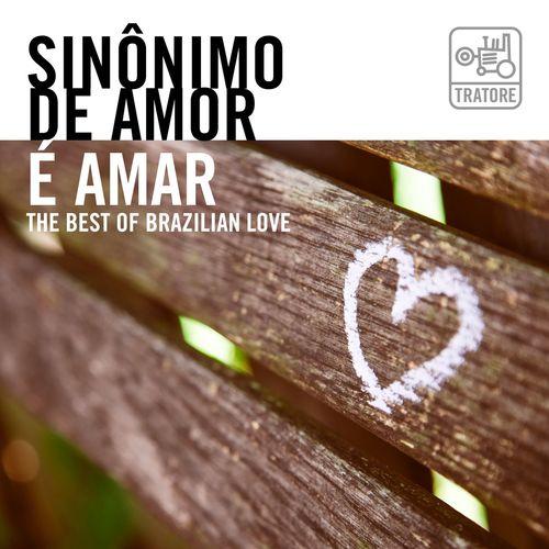 Baixar CD Sinônimo de Amor É Amar: Música Romântica e Apaixonada / the Best Brazilian Love Songs – Varios Artistas (2018) Grátis