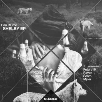 Shelby cover