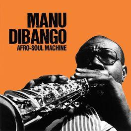 Album cover of Afro-Soul Machine