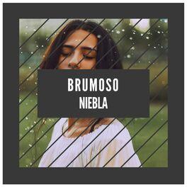 Album cover of Brumoso Niebla
