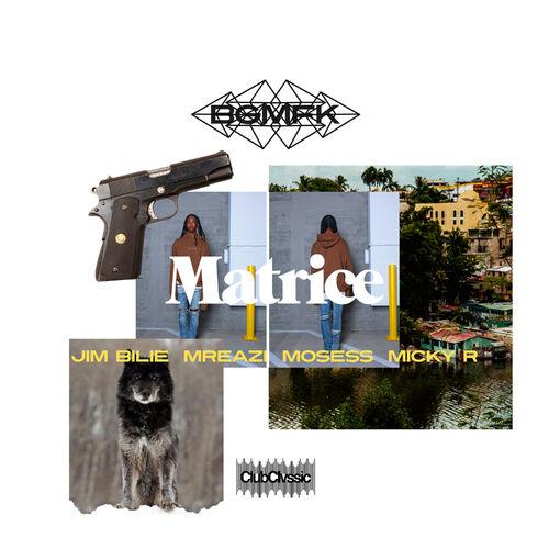 bgmfk matrice