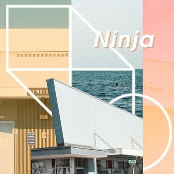 Ninja cover