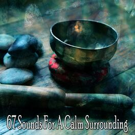 Album cover of 67 Sounds for a Calm Surrounding
