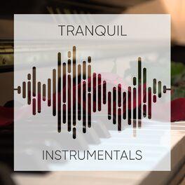 Album cover of # 1 Album: Tranquil Instrumentals