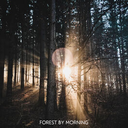 Album cover of Forest by Morning: Blissful Peace in My Head, Tranquil Nature, Bird Sounds
