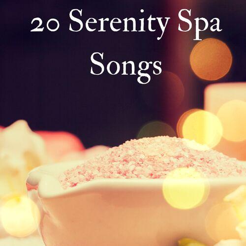 Wellness N Wellness: 20 Serenity Spa Songs - The Best