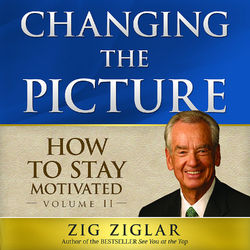 How to Stay Motivated-Changing the Picture Audiobook