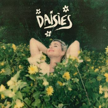 Daisies cover