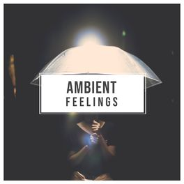 Album cover of # 1 Album: Ambient Feelings