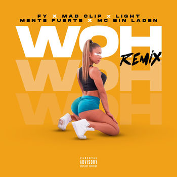 Woh cover