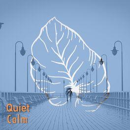 Album cover of # 1 Album: Quiet Calm