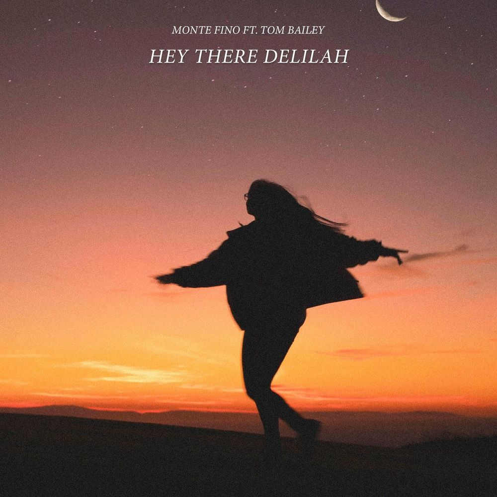 Hey There Delilah (feat. Tom Bailey)