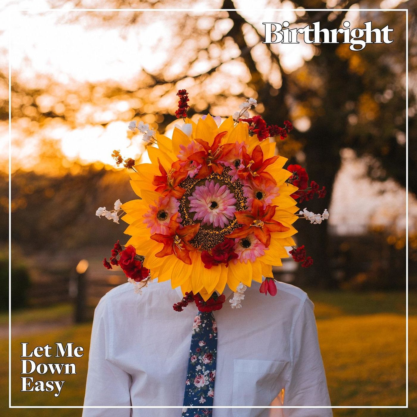 Birthright — Let Me Down Easy (2018)