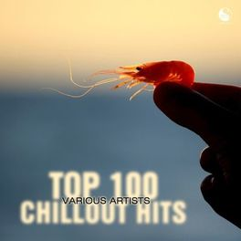 Album cover of Top 100 Chillout Hits