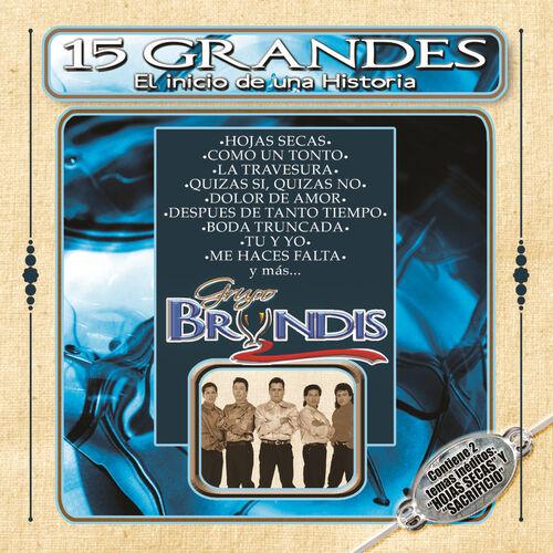 Grupo Bryndis Quizás Si Quizás No Listen With Lyrics Deezer