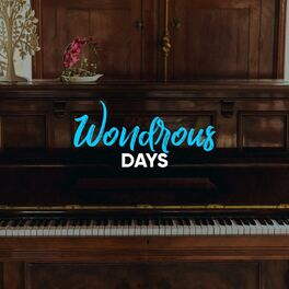Album cover of Wondrous Days