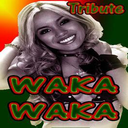 Waka Waka Dj S Waka Waka Shakira Salute Listen On Deezer