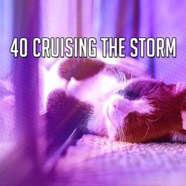 Album cover of 40 Cruising The Storm