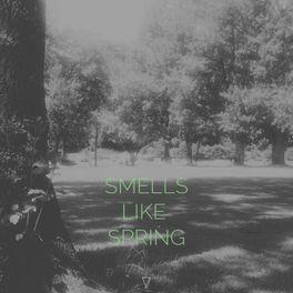 Album cover of Smells Like Spring