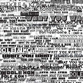 What You Want cover