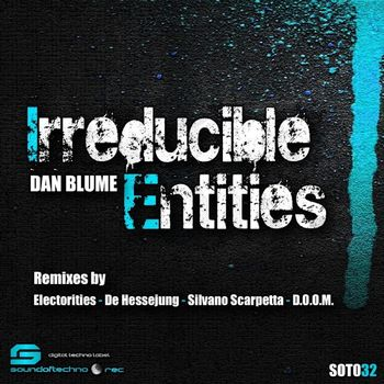 Irreducible Entities cover