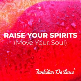 Album cover of Raise Your Spirits (Move Your Soul)