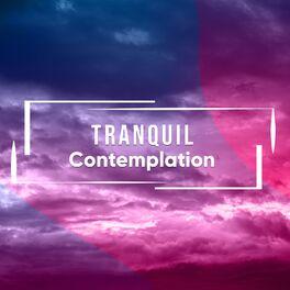 Album cover of # 1 Album: Tranquil Contemplation